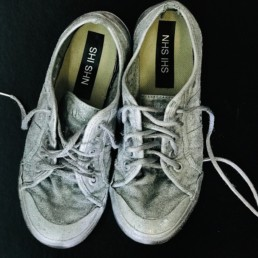 Kate_Gilman_Brundrett_Silver_Shoes_ Theres no place like home